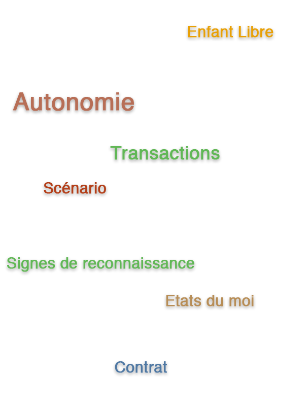 analyse transactionnelle cours 101 e-learning blended learning